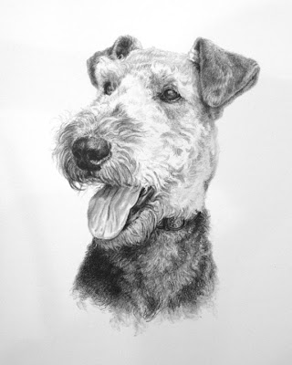 Pet Portrait by Soulful Studios