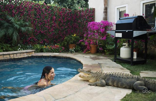 Swimming Pools Dry Up After Draining City Budgets Current Events And Hot Social Topics