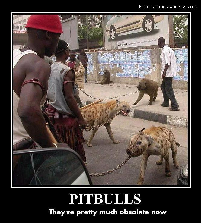 Pitbulls Obsolete Demotivational poster