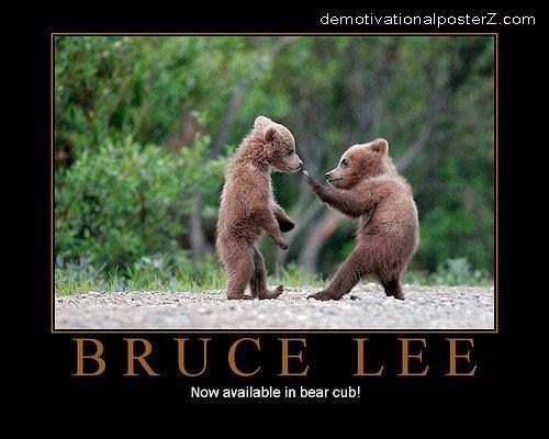 Bruce Lee Bear Cub