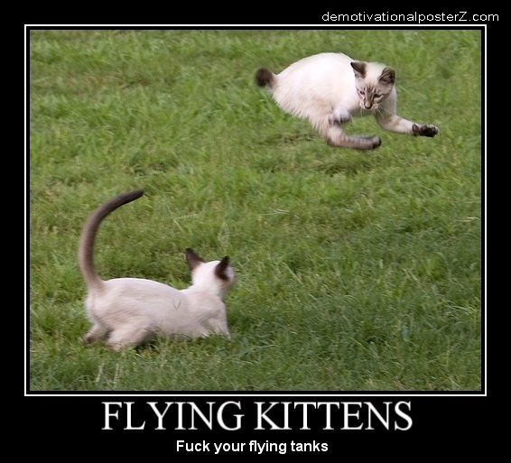 Flying Kittens Motivational