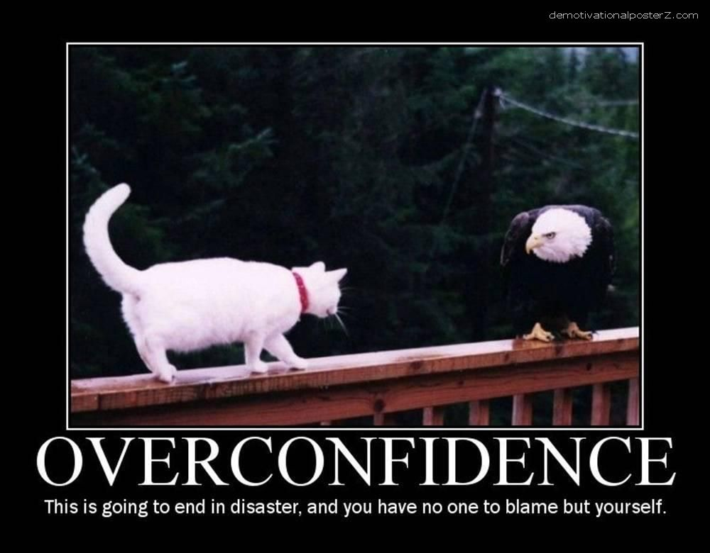Overconfidence - this is going to end in disaster (cat vs eagle)