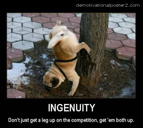 Ingenuity - don't just get a leg up on the competition, get 'em both up