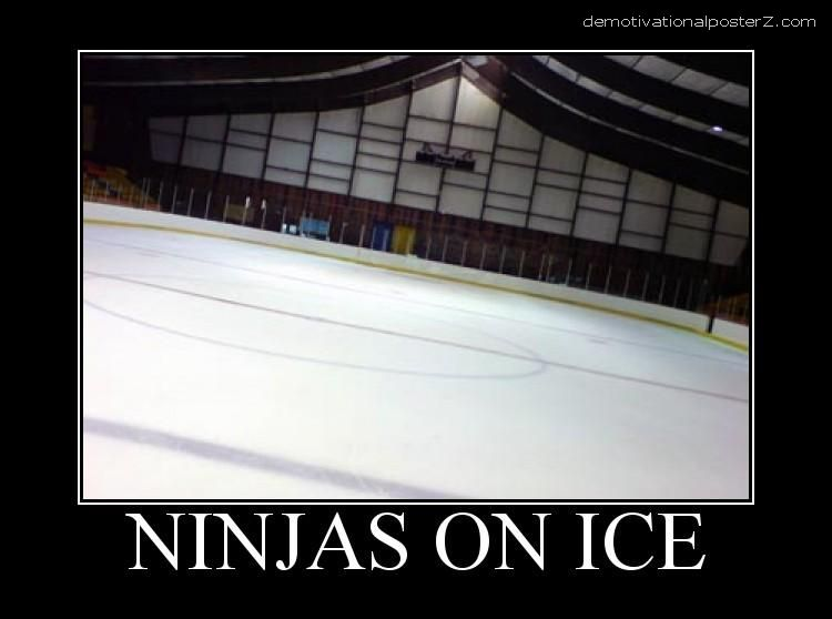 ninjas on ice motivational posters