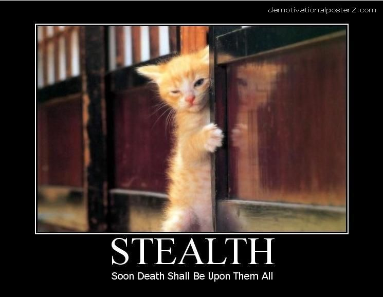 Stealth cat - soon death shall be upon them all