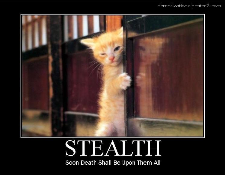 stealth cat motivational poster demotivator