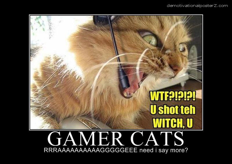 gamer cats motivational poster