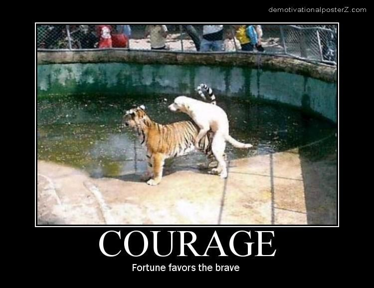 Courage fortune favors the brave motivational poster