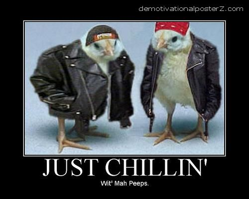 JUST CHILLIN' With Mah Peeps chick motivational poster