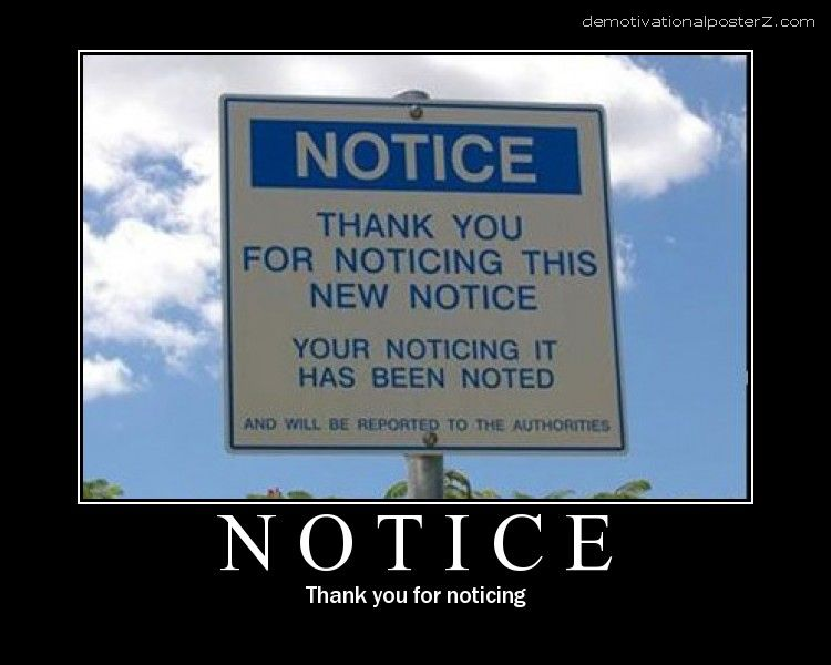 notice sing thanks for noticing