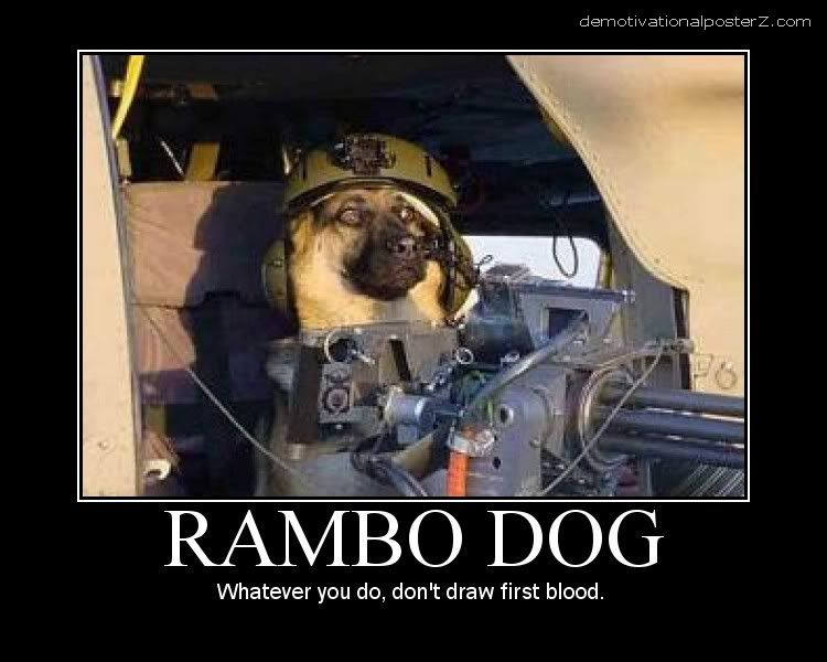 rambo dog motivational poster demotivator