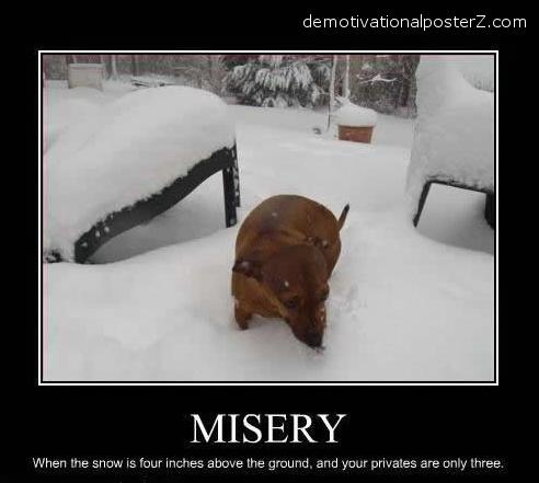 misery dog balls demotivator