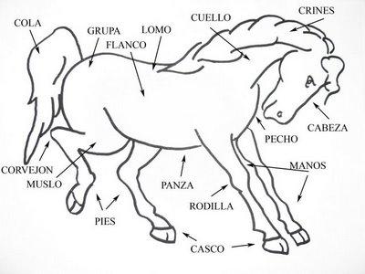 Piruleta colorines proyecto los caballos - Manualidades de caballos para ninos ...