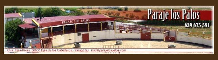 Las mejores capeas en Paraje Los Palos