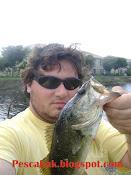 Pesca de Bass