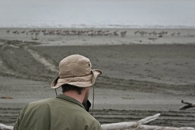 Jesse inspects the godwits