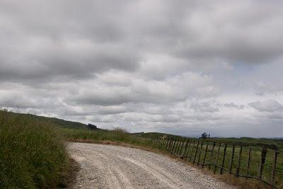 View up No. 2 Line, Pohangina Valley