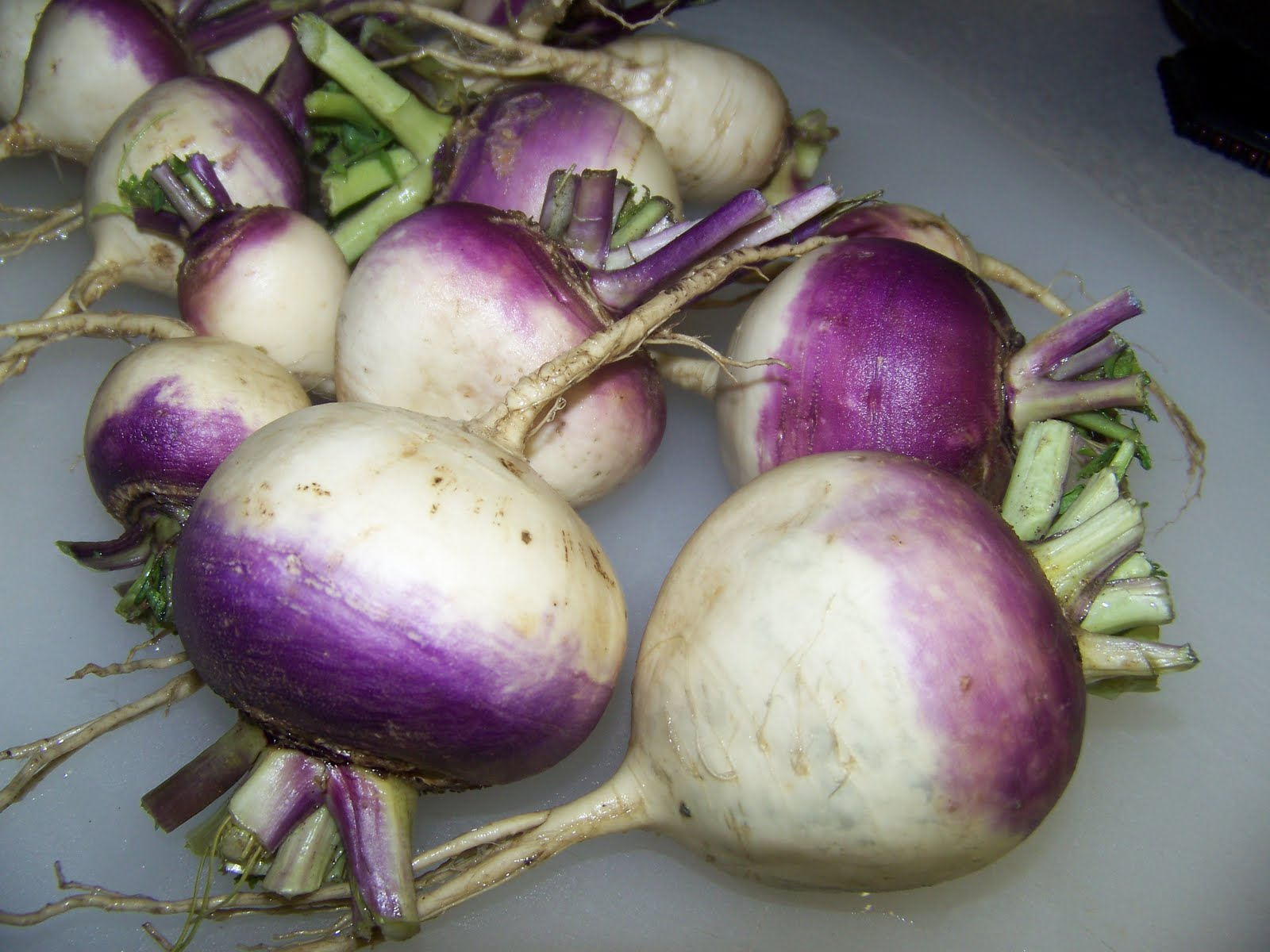 Scalloped Turnips