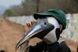 Pinguinito chiquitito..