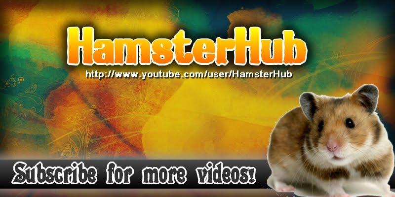 Hamsterhub's Blog