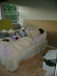 Heat sleeping in