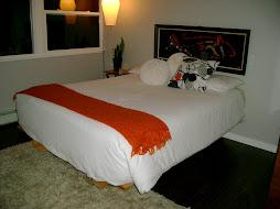 new floating platform bedframe and shag rug