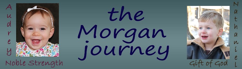 the Morgan journey