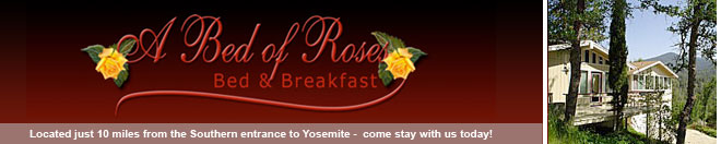 Bed of Roses: Yosemite Bed and Breakfast