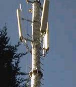 antena-antenna