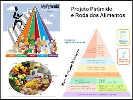 Pirâmide e Roda dos Alimentos