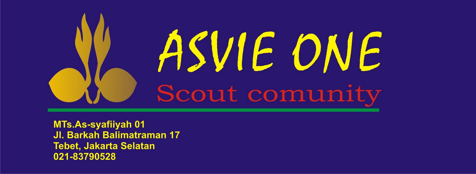 ASVIE ONE