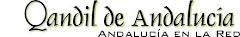 Revista El Qandil