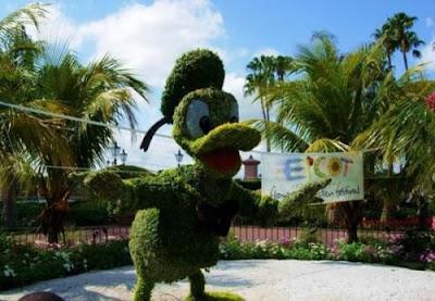 garden <a href=