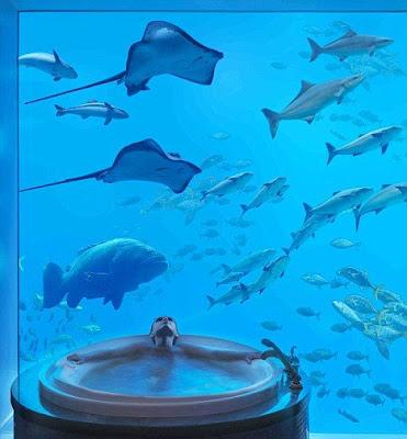 Summer Value in Dubai at Atlantis, The Palm Atlantisthepalm