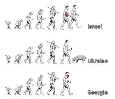 funny evolution pictures
