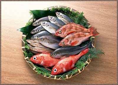 Beautiful ocean fresh seafood Pics