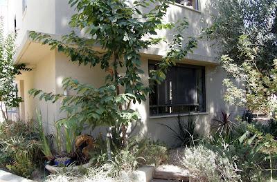 חזית הבית והחלון של הסלון