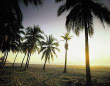 Dulce arena,sol y playa