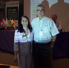 Dr Pengue Jornada EcoEco UNGS