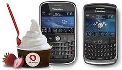 Survey Red Mango berhadiah Blackberry
