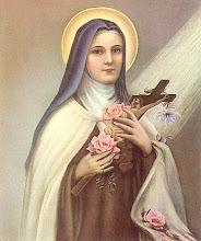 El padre Pancho, que estuvo a su lado al partir me dijo que se la veía igual a Sta.Teresita