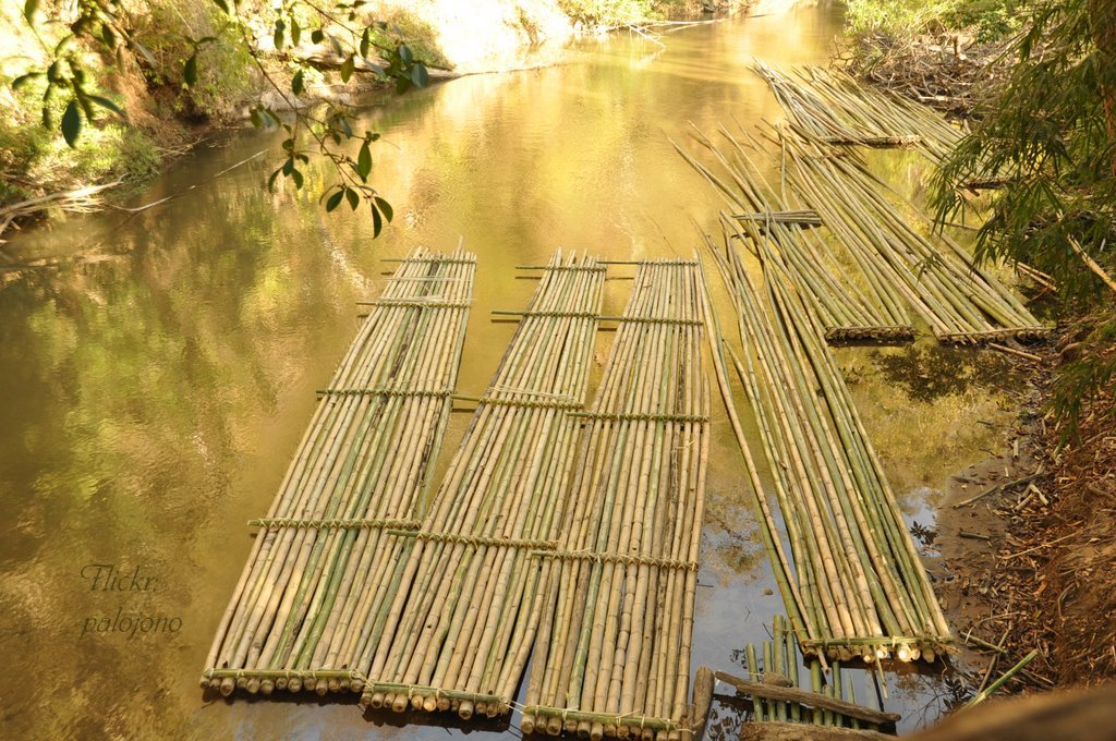 The magic of bamboo palojono for Uses for bamboo canes