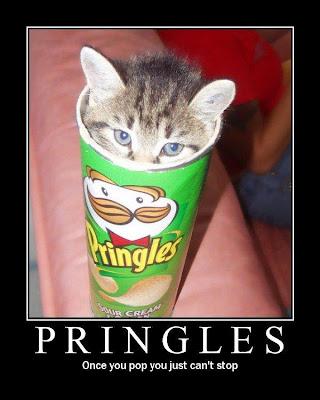 cat_pringles.jpg