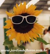 A minha flor de eleição...
