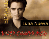 "PREMIO ""TWILIGHT HEART"""