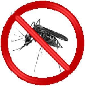 Demam Berdarah (Dengue)
