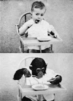 El simio y el niño