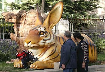 Tigre-conejo