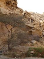 Trekking path C52
