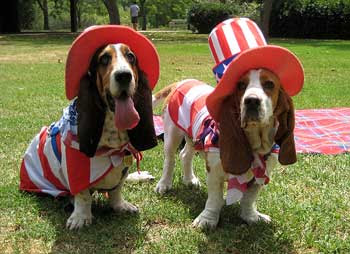 Free Happy Fourth Of July ECards 123 Greetings. Bark U0026 Clark: July 2010